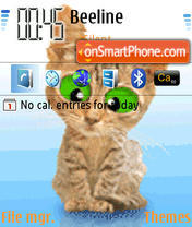 Crazy Cat Animated theme screenshot