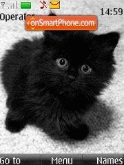 Black kitten theme screenshot