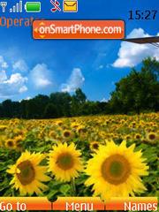 Sunflower clock (SWF) es el tema de pantalla