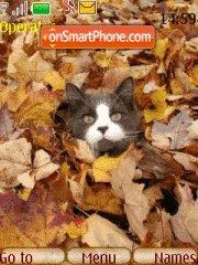 Cats n Autumn theme screenshot