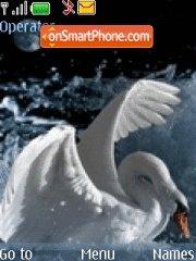 Swan es el tema de pantalla