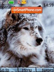 Wolf in winter theme screenshot