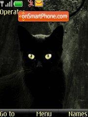 Скриншот темы Black cat