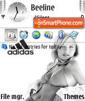 Скриншот темы Adidas 31