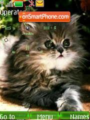 SWF cat clock theme screenshot