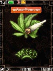 Need Weeed es el tema de pantalla