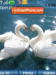 Swan love theme screenshot