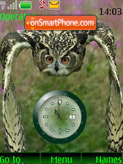 SWF clock owl theme screenshot