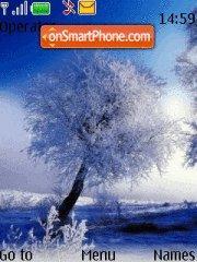 Beautyful Winter theme screenshot