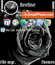 Black Rose 02 es el tema de pantalla
