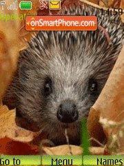 Hedgehog theme screenshot