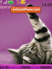 Whiskas Cat theme screenshot