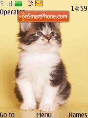Cats Theme-Screenshot