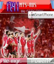 Turkey Football Team theme screenshot