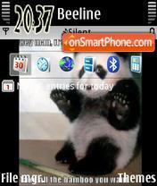 Funny Panda theme screenshot