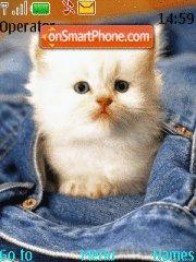 Скриншот темы White Kitten