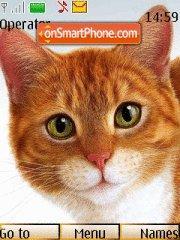 Ginger Cat tema screenshot