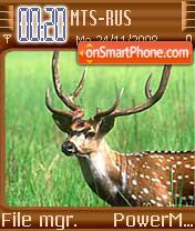 Spotted Deer theme screenshot