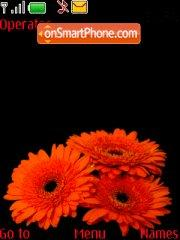Chrysanthemum tema screenshot