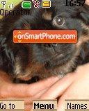 Doggie theme screenshot