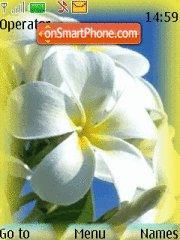 Pretty White Flower theme screenshot
