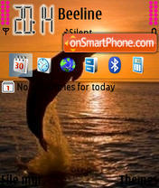 Dolphins 05 theme screenshot