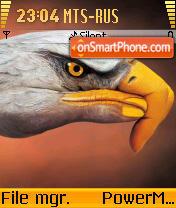 Eagle 02 es el tema de pantalla