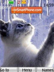 Cat and Winter es el tema de pantalla