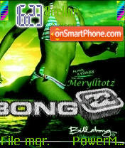 Billabong tema screenshot