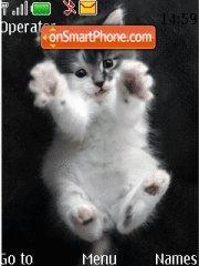 Скриншот темы Kitten
