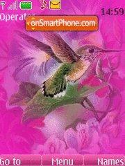Birds pink theme screenshot