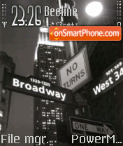 New York 03 theme screenshot