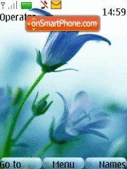Blue Flowers 01 theme screenshot