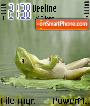 Frog 05 theme screenshot