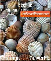 Shells es el tema de pantalla