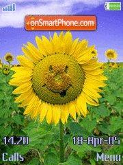 Sunflower tema screenshot