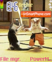 Cat Karate theme screenshot