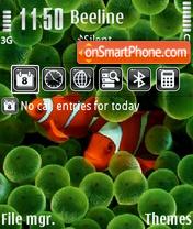 Clown Fish mix2 theme screenshot