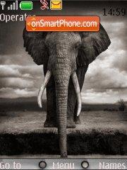 Elephant 02 theme screenshot
