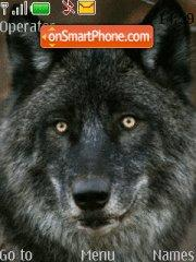 Black She Wolf theme screenshot