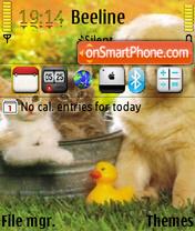 Cute Animals theme screenshot
