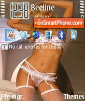 Lenka theme screenshot