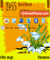 Spring Flowers DF tema screenshot