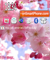 Pink Flowers 02 theme screenshot