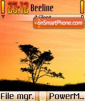 Sunny 01 es el tema de pantalla