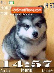 SWF puppy 24 Wallpaper theme screenshot