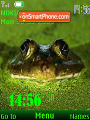 SWF frog 24 wallpaper theme screenshot