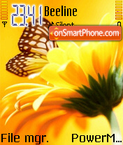 Butterfly and Yellow Flower theme screenshot