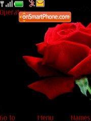 Red Rose tema screenshot