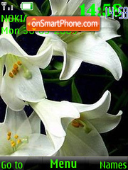 SWF white lily 24 wallpaper theme screenshot